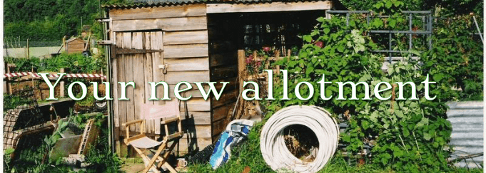 Your New Allotment